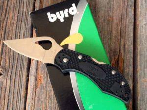 Spyderco Byrd Robin 2